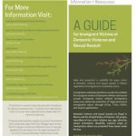 A Guide for Immigrant Victims of Domestic Violence