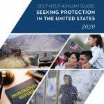 Self Help Asylum Guide Cover