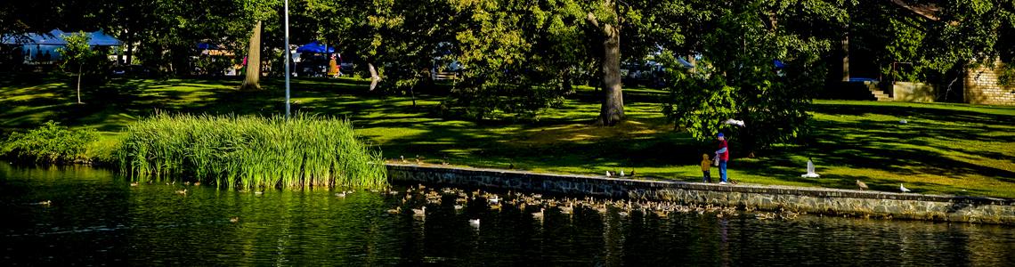 Deering Oaks Park in Portland, Maine