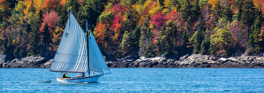 Boat in Fall